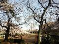 多摩川台公園 / たまがわだいこうえん