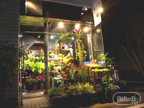 BIONIC PLANTS / バイオニックプランツ