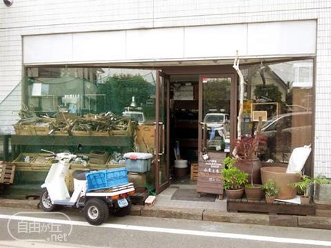 Aquarium Shop 水景工房 奥沢店 / アクアリウムショップ スイケイコウボウ