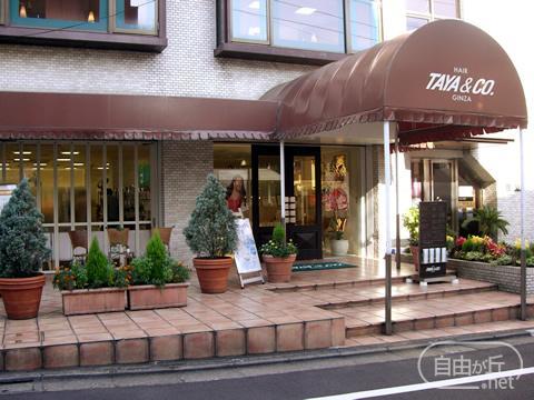 TAYA & CO. GINZA 自由が丘店 / タヤアンドコーギンザ