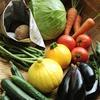 当店の美味しさの秘密はぴたらファームの新鮮野菜にあり!!
