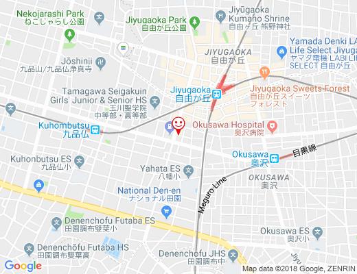 JIYUGAOKA PLUS / 自由が丘プラスの地図 - クリックで大きく表示します